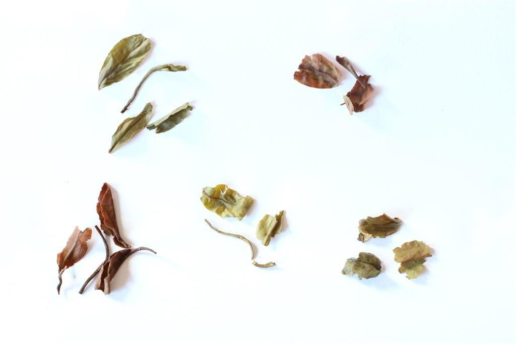 Herbata darjeeling