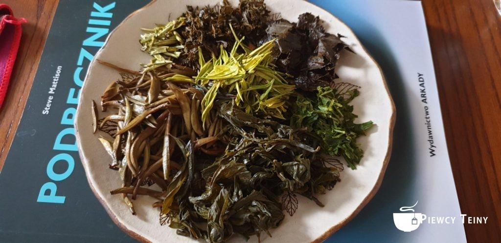 Fusy herbaciane natalerzu stojącym napodręczniku ceramiki.